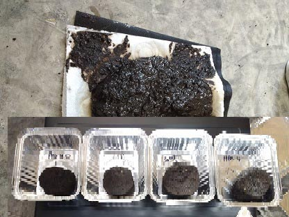 SF60 product manufacturing update; mud pies and giant hot composting bins!