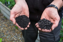 Which biochar should you buy?